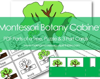 Montessori Botany Cabinet PDF Parts of a Tree 3 Part Cards & Puzzle and Activity Labeling Set