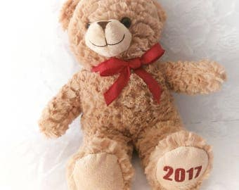 Valentine Bear, 2018 Bear, Personalized Bear, Personalized Stuffed Animals,  Valentines Day Gift