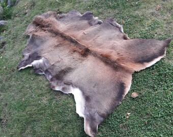 Giant Natural Deer Hide ! Real Deer Rug | Deer Skin | Decorative Rug |  Skandinavian