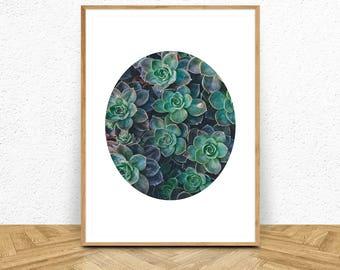 Succulent Print, Succulent Wall Decor, Succulent Art, Minimalist  Print, Circle Art, Digital Download Succulent Poster, Circle Wall Art