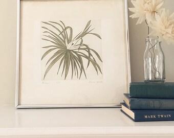 Vintage Plant Sketch/ Watercolor in Silver Frame