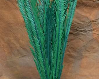 Dried Palm Leaves | Dried Palm Fronds | Dried Palm | Dried Decor | Natural Decorations