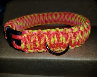 King cobra dog collar