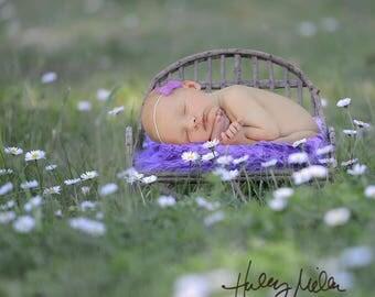 Newborn Digital Backdrop/Digital Background/Prop/Brown Wicker Bench/Purple Flowers