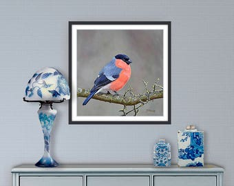 Digital painting, Bullfinch, digital download and print on canvas or paper art