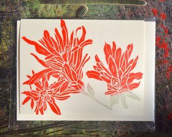 Indian paintbrush card