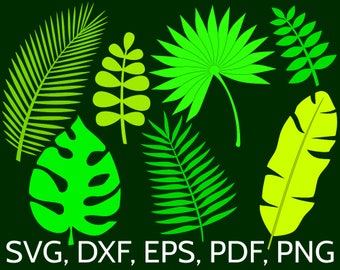 7 Jungle Tropical Leaves SVG Cut Files for Cricut / Silhouette. Monstera, Banana & Palm Leaf, Summer Green Vector Clipart DXF EPS png file