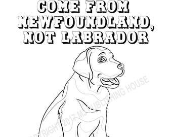 labrador retrievers coloring pages bundle 5 pages digital download for both kids