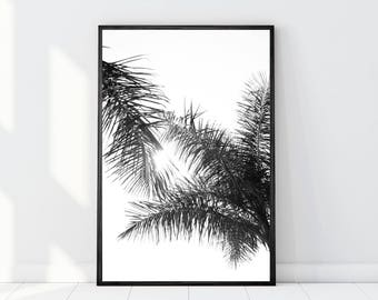 Palm Leaves Print, Palm Tree Print, Palm Leaves Photo, Palm Leaves Art, Black and White Palm Trees, Minimalist Art, Beach Art, Digital Print