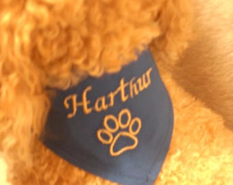 Scarf tied blue to customize for your dog size XXS-XS-S