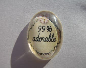 Cabochon 18 X 25 mm oval with the image of funny writing 99% adorable polka dots