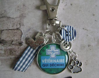 Veterinary keychain