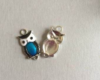 OWL/owl: blue and white