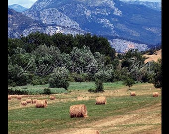 Photo 30X40cm fields with rolls of straw and mountain - Verdon Park