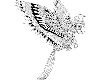 Hand drawn zentangle parrot