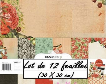 """Set of 12 sheets """"CURIOSITY"""" 30 X 30 cm (réf.210) scrapbooking theme *."""