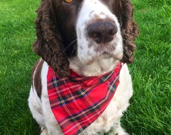 Designer Dog Bandanas for Dogs, Cats & Puppies in beautiful Red Tartan Egyptian Cotton from The Bandana Cabana