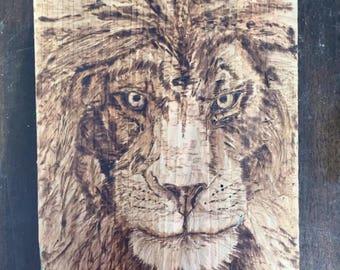 Lion Pyrography