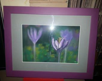 Flower table type purple croqus
