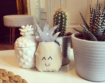 Small grey pineapple and stars for cat