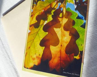 """Handmade from photographs of fall leaves double card """"Shadow of autumn"""" 10 5x15cm"""