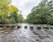 Stepping Stones Lealholm...