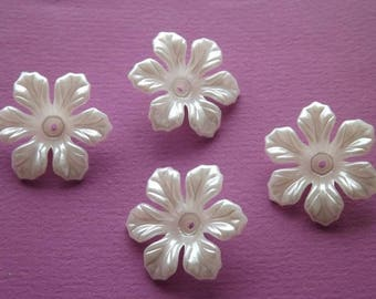 6 large beads/caps: 3D acrylic pearly white flowers