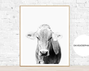 Cow Print, Cow Wall Art, Cow Decor, Black and White, Digital Download, Farm Animal Print, Animal Photography, Cattle Print, Cow Poster