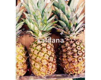 Home Decor Wall Art Pineapples Food Photography