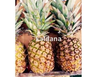 Home Decor Wall Art Pineapples Food Photography