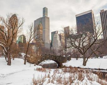 Central Park Snow, NYC