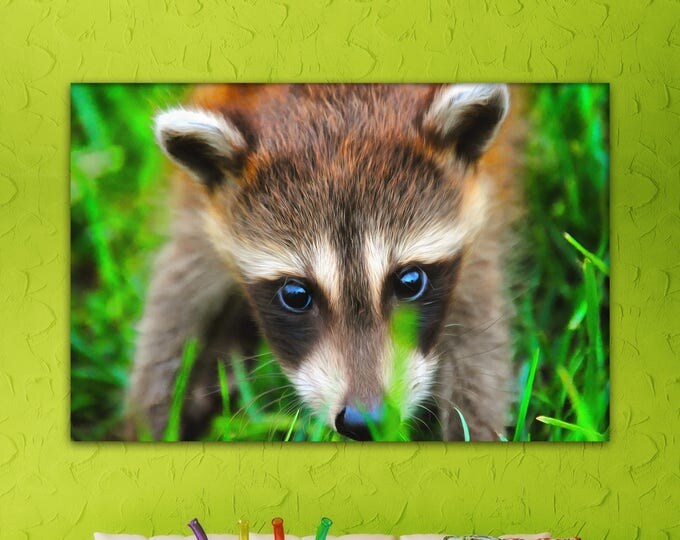 Cute Raccoon decor, Raccoon canvas, Сute canvas, Art Raccoon, zoo art, Interior decor, room design, print poster, art picture, gift
