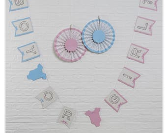 Baby Shower/Gender Reveal/Boy Or Girl Bunting - Little Lady Or Mini Mister