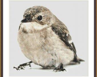bird cross stitich pattern download