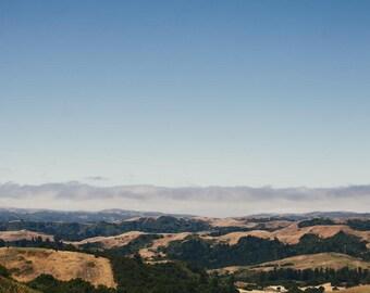 Redwood City, California Travel Photograph, Landscape Print
