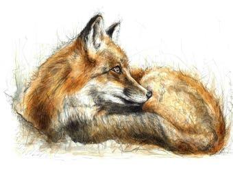 Winter Fox Print