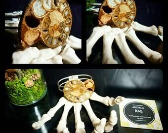 Ammonite Fossil Bangle