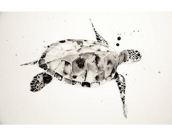 Sea turtle illustration, ink