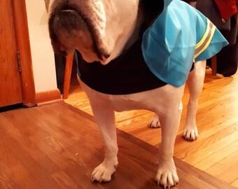 Spring dog coats
