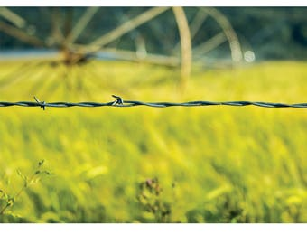 Landscape Photography - Oregon Trail, Nature Photography, Barbwire, Industrial, Prints, Canvas