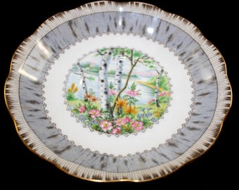 "Royal Albert ""Silver Birch"" England Bone China Vintage Dish Saucer"