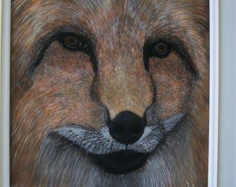No: 156 - Red Fox