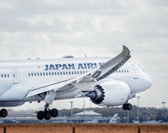 Photo Japan Airlines 787