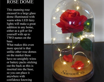 Rose Dome, Enchanted rose, Forever Rose, Beauty and the beast inspired dome,