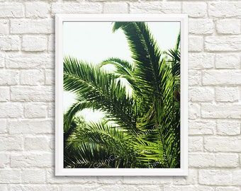 Palm in Mykonos, engineering print