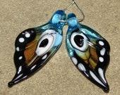BHG  Amber blue wings