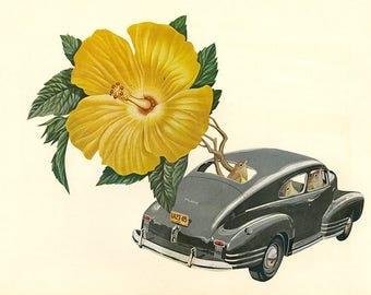 Flower powered.  Original collage by Vivienne Strauss.
