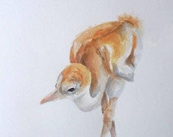 Sandhill Crane watercolor painting baby bird Nursery art shorebird chick