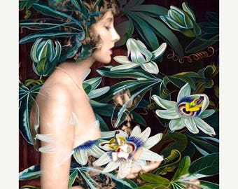 HUGE SUMMER SALE 40% off Fine Art Print, Giclee Archival Print, Photomontage, Collage, Painted Photographs, The Day of the Passion Flower