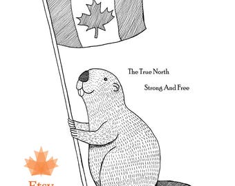 Canadian Art Print Beaver Canadian Maple Leaf Flag Funny Canadian Beaver Illustration Print Woodland Beaver Ink Drawing Canadian Wall Decor